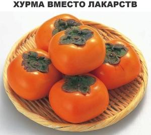 Хурма фото