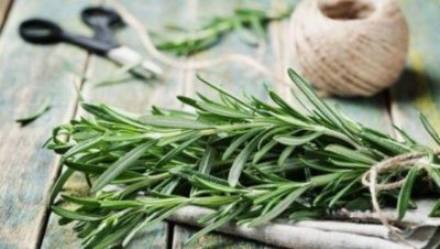 Самая мощная трава для мозгового кровообращения, сердца, сосудов, надпочечников, суставов, кожи, волос и не только!