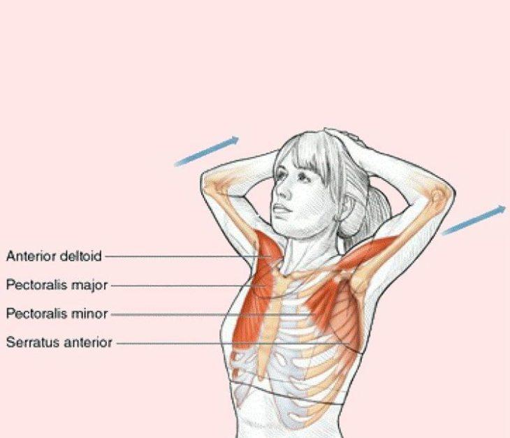 6 упражнений, которые подтянут грудь не хуже пуш-ап 1