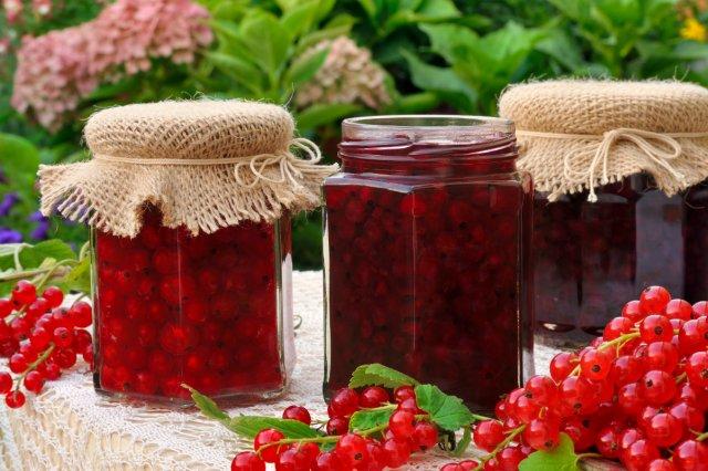 Что приготовить из смородины на зиму – простые рецепты вкусных заготовок 13