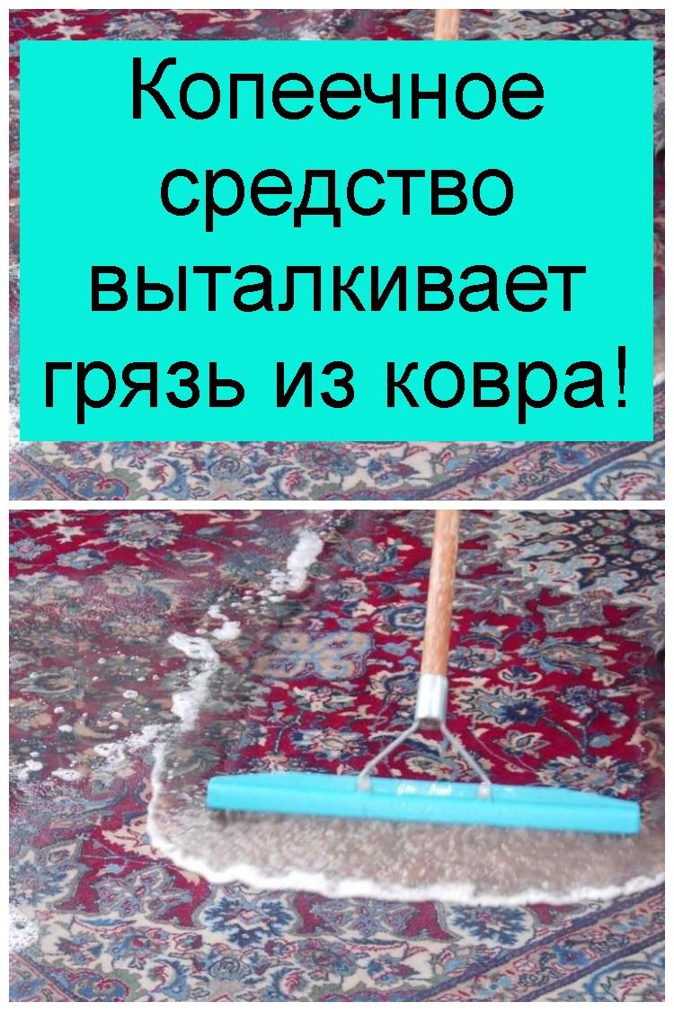 Копеечное средство выталкивает грязь из ковра 4