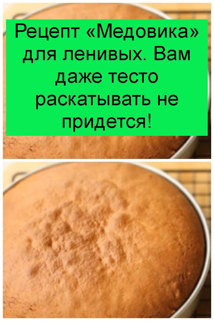 Рецепт «Медовика» для ленивых. Вам даже тесто раскатывать не придется 4