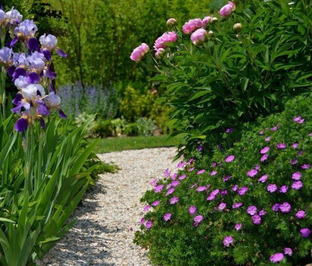garden-03-640x547-1