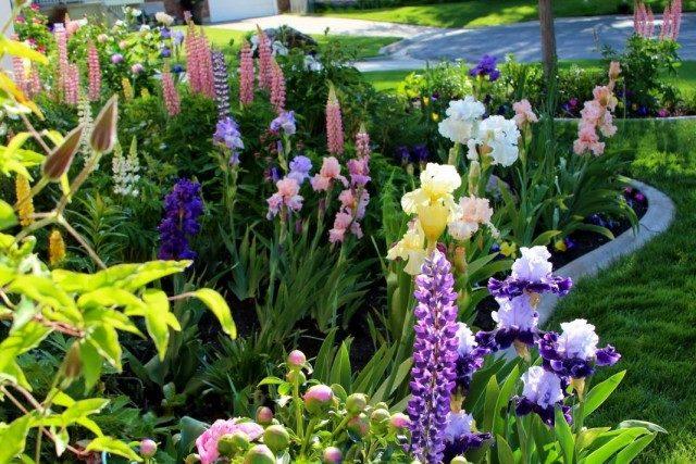 garden-06-640x427-1