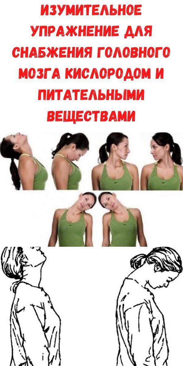 izumitelnoe-uprazhnenie-dlya-snabzheniya-golovnogo-mozga-kislorodom-i-pitatelnymi-veschestvami