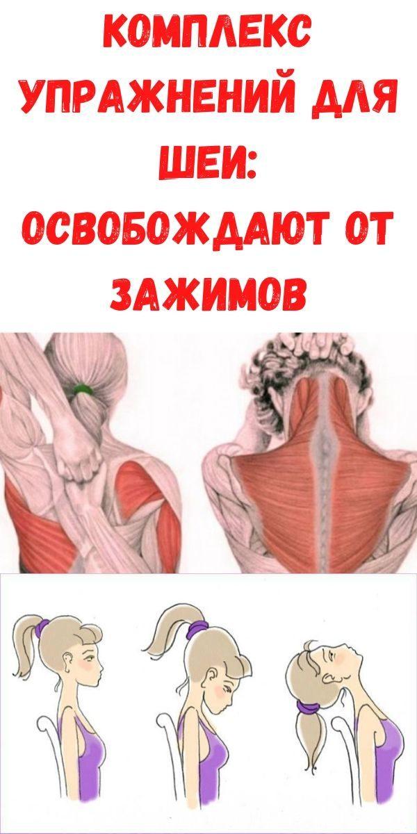 kompleks-uprazhneniy-dlya-shei_-osvobozhdayut-ot-zazhimov