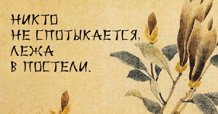 poslovicy-3