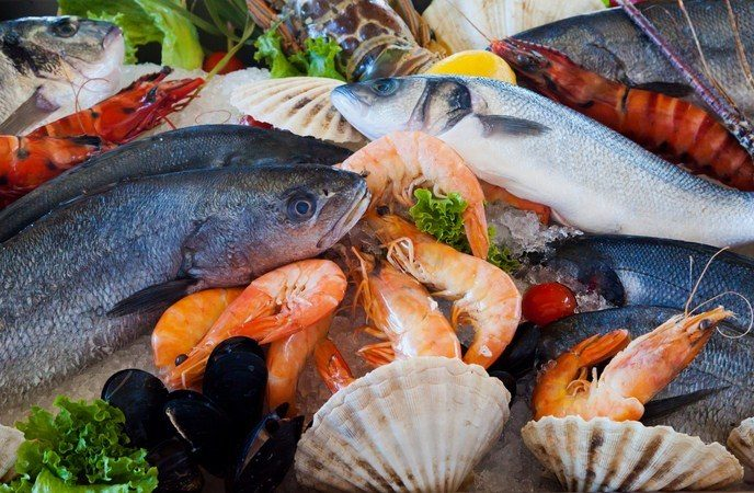 sources-of-vitamin-k-animal-products-and-seafood