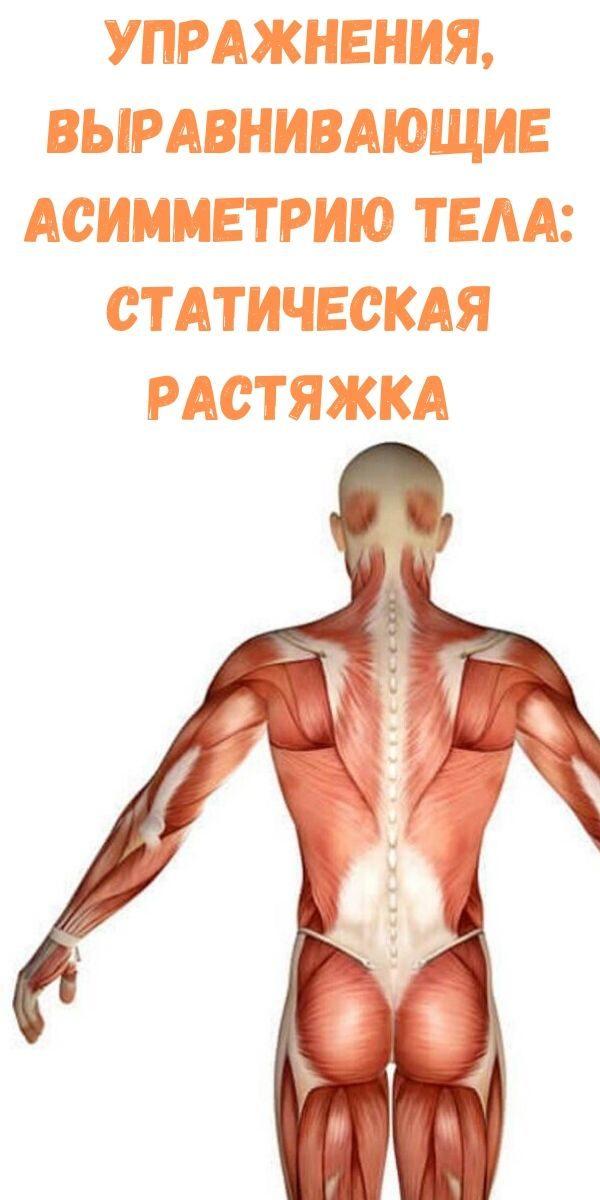 uprazhneniya-vyravnivayuschie-asimmetriyu-tela_-staticheskaya-rastyazhka