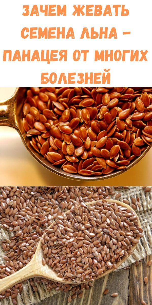 zachem-zhevat-semena-lna-panatseya-ot-mnogih-bolezney