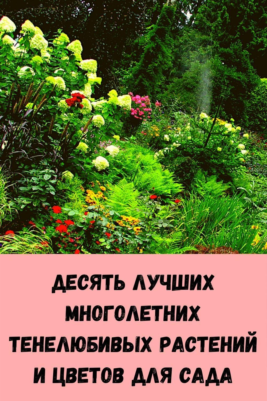 4-oshibki-pri-pokupke-odezhdy-iz-za-kotoryh-veschi-ploho-na-vas-smotryatsya-7
