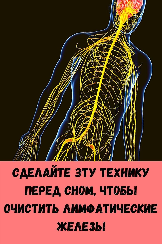 dobavte-1-kaplyu-masla-oregano-v-vodu-i-posmotrite-chto-proizoydet-s-vashimi-legkimi-14