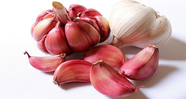 garlic-can-remove-14-cancer-types-13-infections