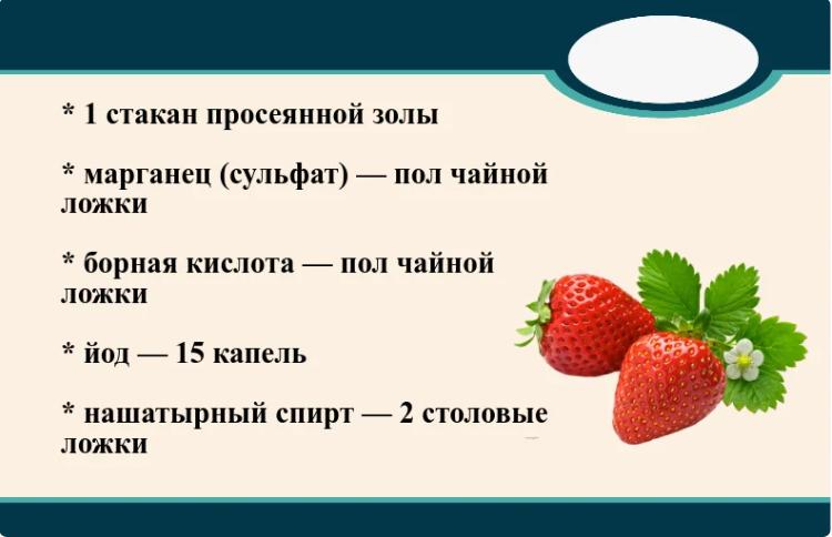 kogda-zatsvela-klubnika-gotovlyu-kompleksnoe-udobrenie-kotoroe-povyshaet-urozhay-v-2-raza2